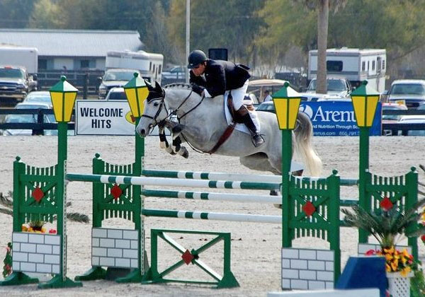 Hunter Jumper Equitation Coaching Toronto Ontario Showjumping Training Horse Rider GTA Hunter Jumper Sales Training Equitation Horses for Sale Grand Prix Showjumping Chris Delia Stables Toronto Ontario Canada